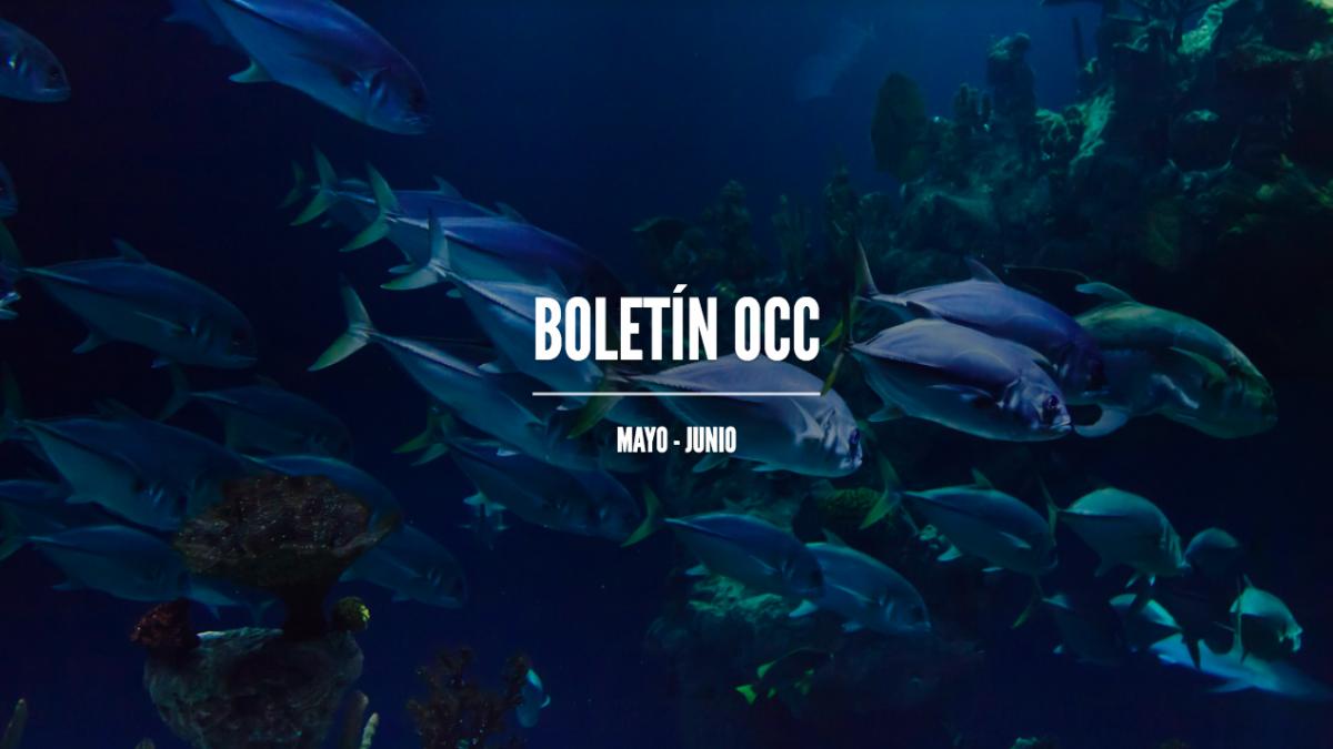 mes de los océanos